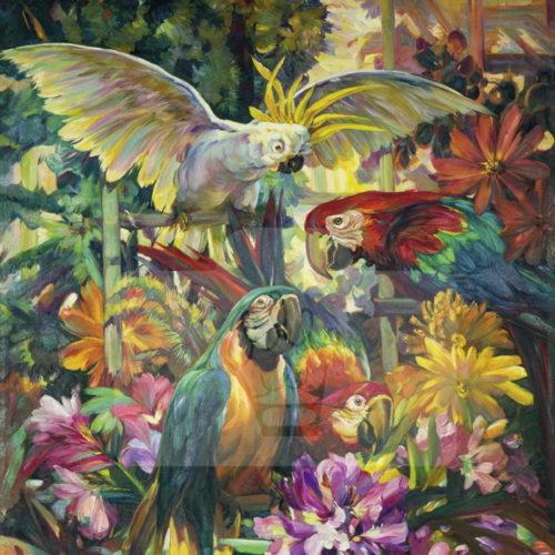 Motiv Papageien bunt  |  Bst.-Nr.: 007-009