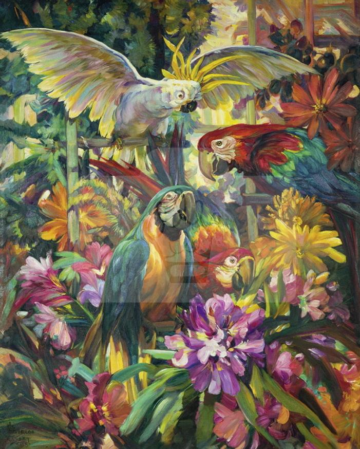 Motiv Papageien bunt     Bst.-Nr.: 007-009