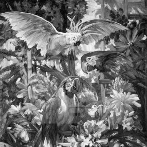 Motiv Papageien (s/w)  |  Bst.-Nr.: 007-010