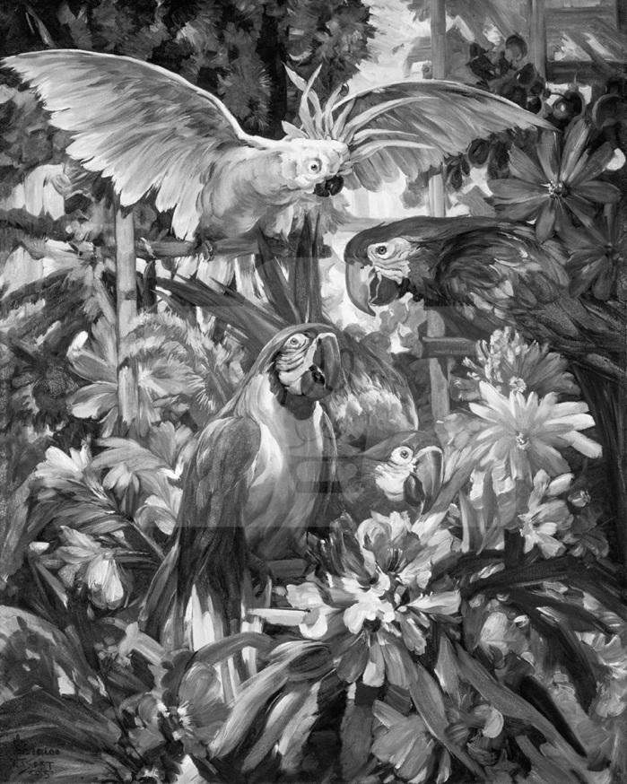 Motiv Papageien (s/w)     Bst.-Nr.: 007-010