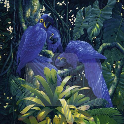 Motiv Blaue Papageien  |  Bst.-Nr.: 007-017