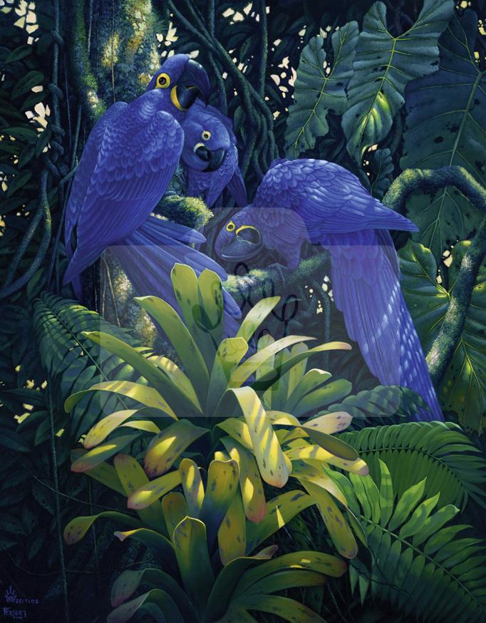 Motiv Blaue Papageien     Bst.-Nr.: 007-017