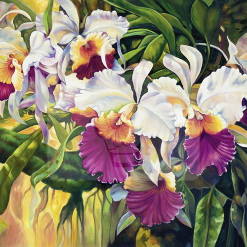Motiv Orchideen bunt  |  Bst.-Nr.: 007-018