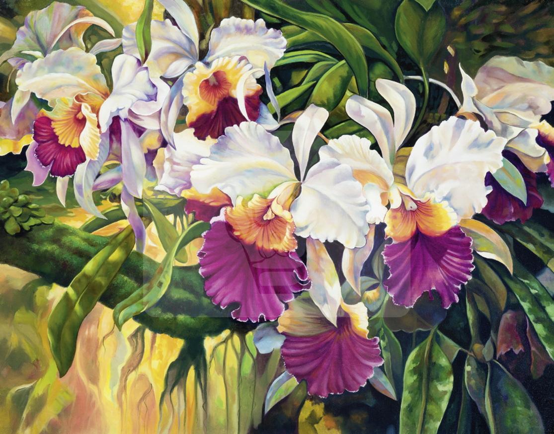 Motiv Orchideen bunt     Bst.-Nr.: 007-018