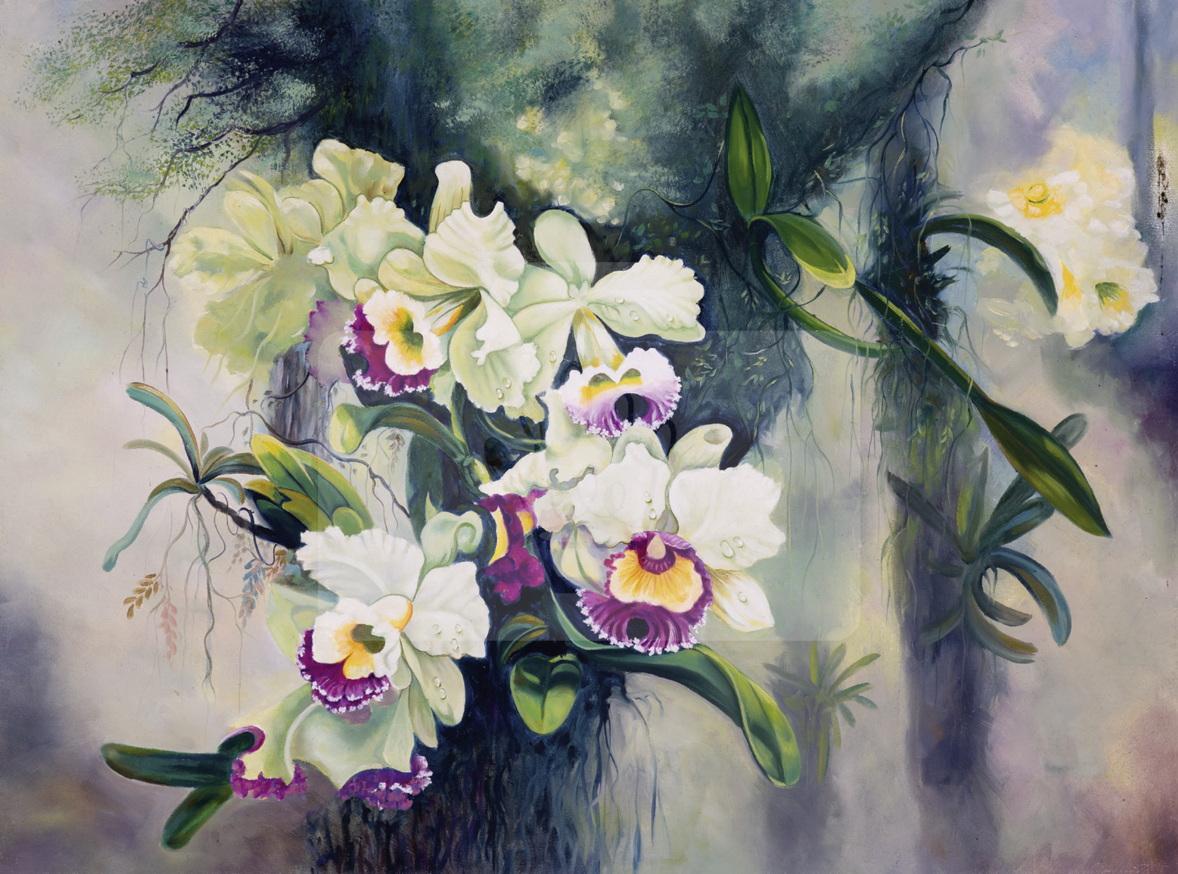 Motiv Orchideen dezente Farben    Bst.-Nr.: 007-019